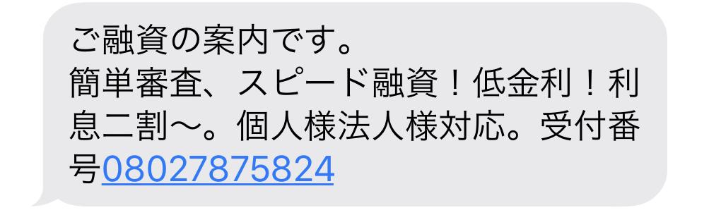 08027875824からのメール